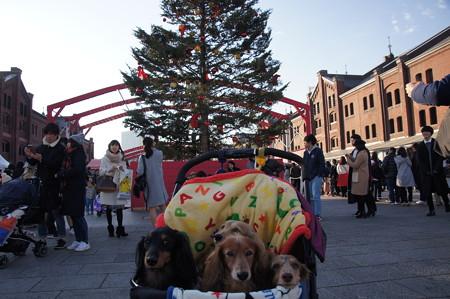 赤レンガクリスマスマーケット