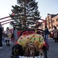 写真: 赤レンガクリスマスマーケット