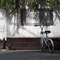 写真: カフェのある街角