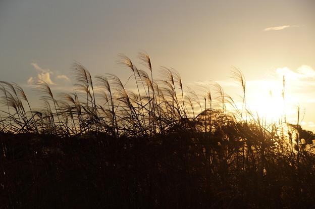 風は北風冬風