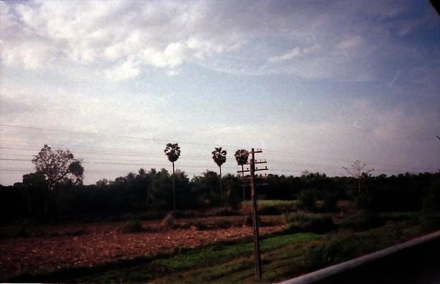 Thailand / タイ、通信用電柱