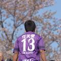 写真: 桜をバックに