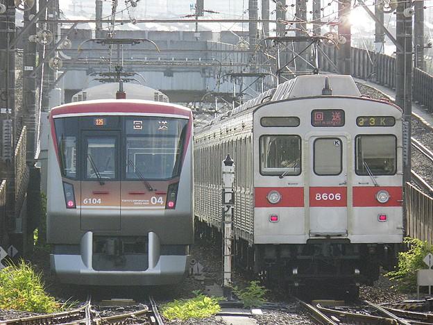 P6030056