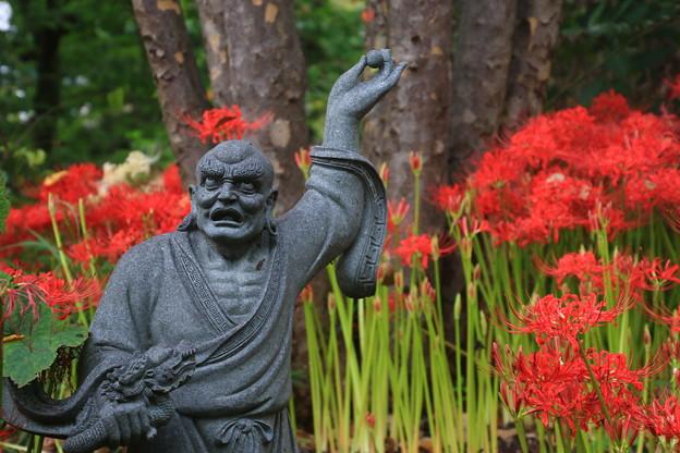太田 常楽寺 170923 03