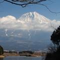 富士山 140101 05 田貫湖から
