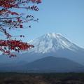 富士山 091121 03 精進湖 山田屋ホテル前から
