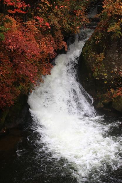 写真: 奥日光 竜頭の滝 171017 04