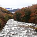 奥日光 竜頭の滝上流 171017 06