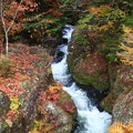 奥日光 竜頭の滝上流 171017 07