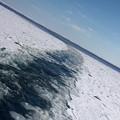 写真: 紋別 流氷クルーズ 130226 05