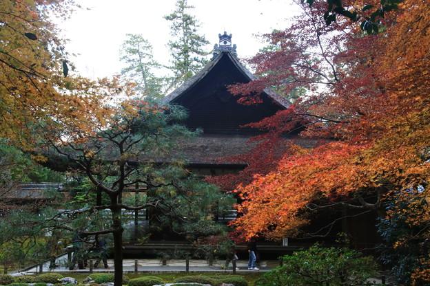 南禅寺 171201 05
