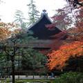 写真: 南禅寺 171201 05