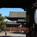 写真: 東寺 171202 03