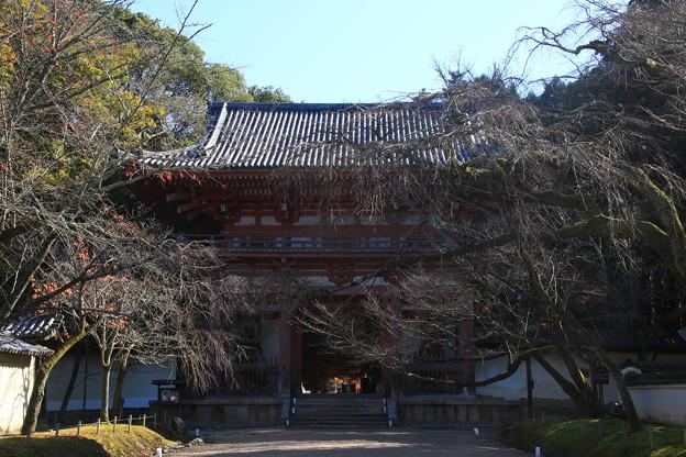 醍醐寺 171202 01