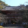写真: 醍醐寺 171202 01