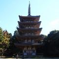 写真: 醍醐寺 171202 02