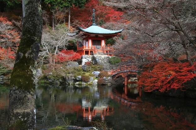 醍醐寺 171202 05