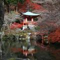 写真: 醍醐寺 171202 05
