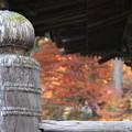 写真: 常楽寺 171202 02