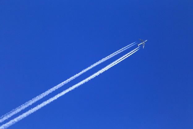 写真: 早朝のジャンボジェット機