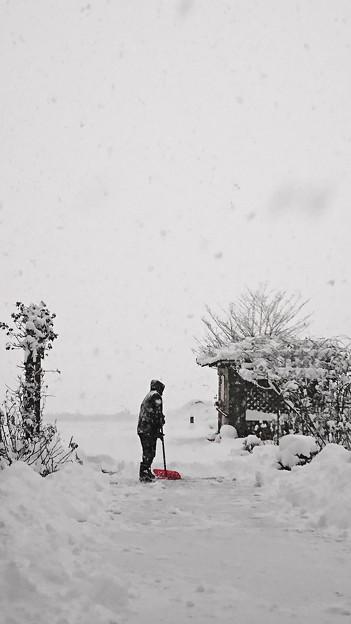 雪かきする人