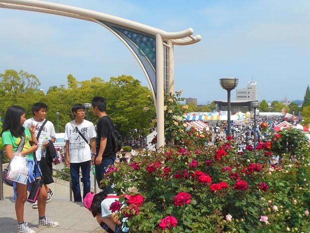 緑町公園会場のばら花壇の屋上風景@福山ばら祭