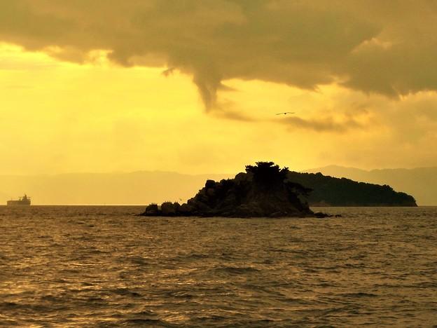 瀬戸の岩礁海域@燧灘(ひうちなだ)@背景は中国山地
