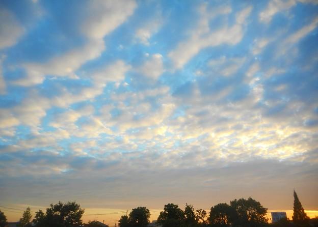 写真: 今朝の秋空