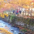 写真: 谷あいの佛通寺川のせせらぎが聞こえる@紅葉最前線