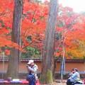 Photos: 参道の茶屋の紅葉@古刹・佛通寺