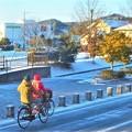 Photos: ほんのり雪の朝@瀬戸路・鏡開きの日