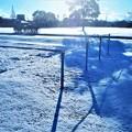 写真: 珍しい雪の朝@鏡開きの日