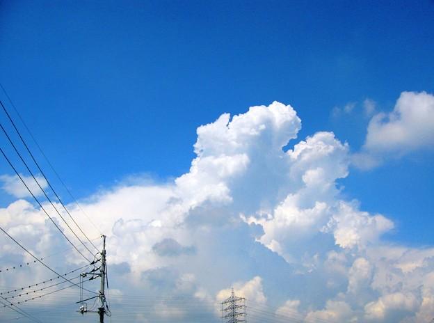 初秋の空に雲の峰