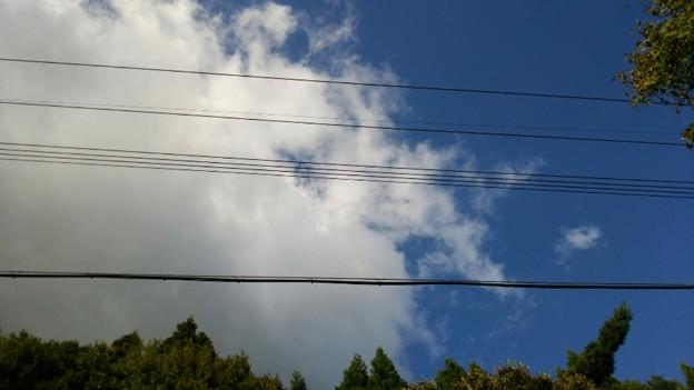 空が青かった