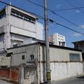 写真: DSC05020