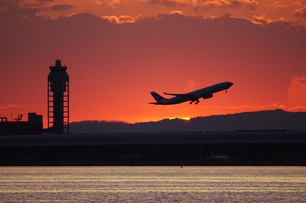 写真: 日没に飛び立つ
