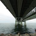 写真: 関西空港橋(真下)