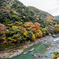 写真: 嵐山保津川の秋