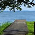 湖に続く道・・・