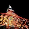 30年ぶりの東京タワー
