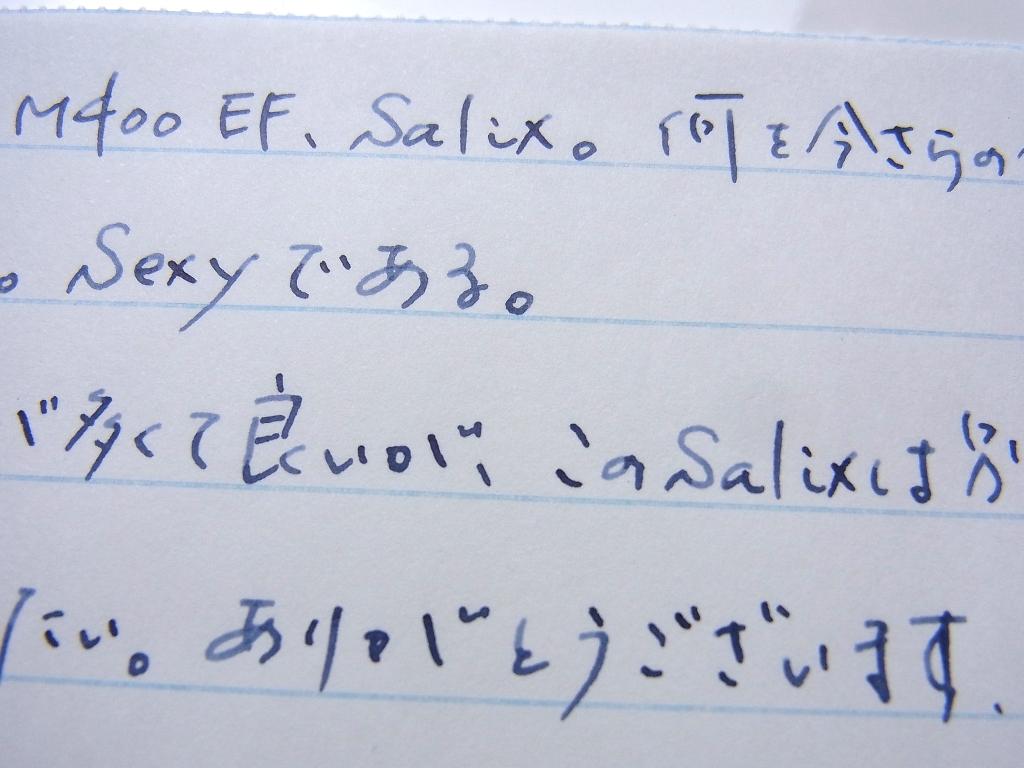 或る日のM400茶縞EFとSalixと榛原蛇腹便箋(拡大)