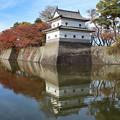 写真: 新発田城二の丸隅櫓