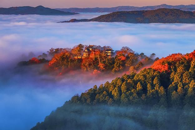 写真: 秋雲海 天空城