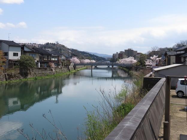 浅野川上流を見る
