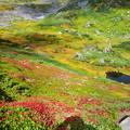 Photos: トムラウシ公園、素晴らしい!!