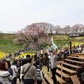 滝桜会場!