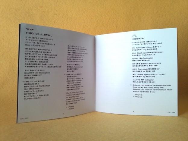 久保田利伸 THE BADDEST ベスト盤 CD T 流星のサドル 収録
