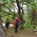 森林公園ウォーク
