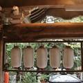 写真: 平口不動寺遠州の名工「鈴木八郎」さんの作品。鈴木さんは竜の完成後すぐに亡くなったといい、竜とつながる梁(はり)の彫刻は未完成のまま残されている。