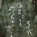 芭蕉句碑 「ほろほろと山吹散るか瀧の音」
